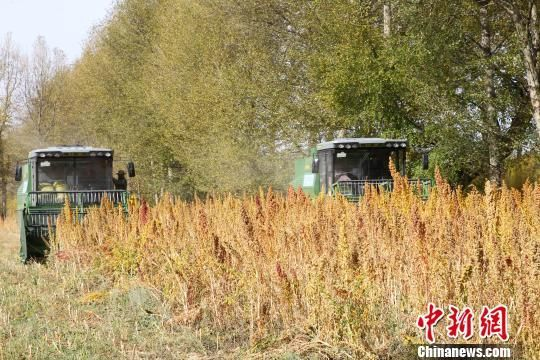 十堰市上半年推广各类农业机械超万台